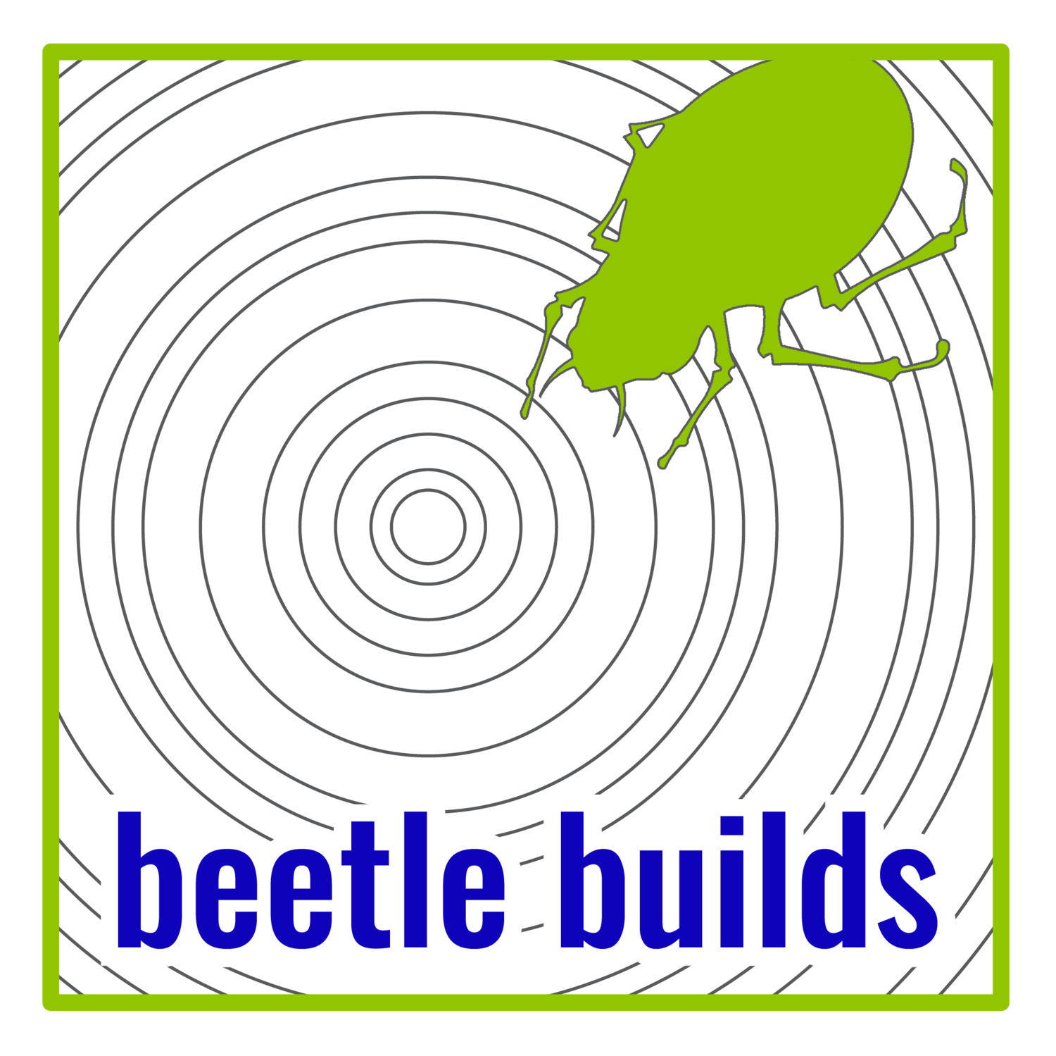 beetle builds