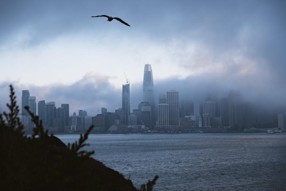 San Francisco from Treasure Island.