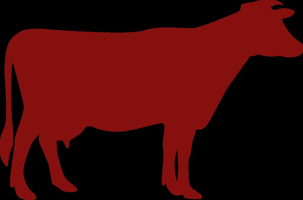 beef_web2.png