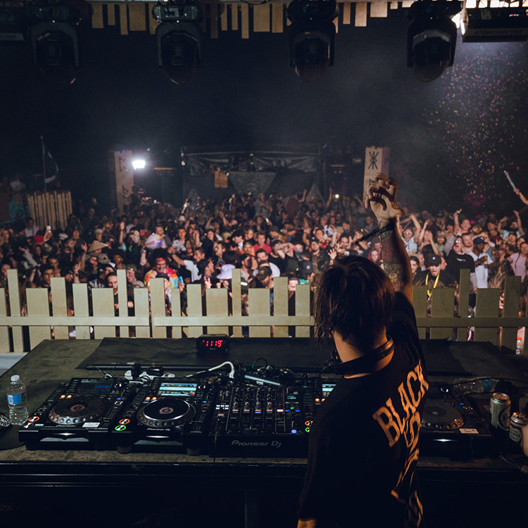ARTISTS - Musicians, DJs et producteurs