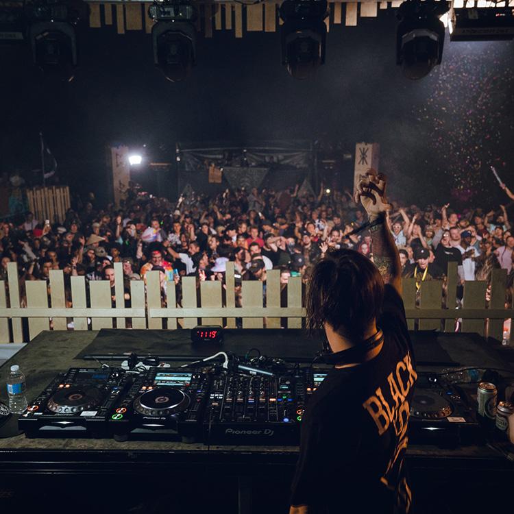 ARTISTS - Live acts & DJs
