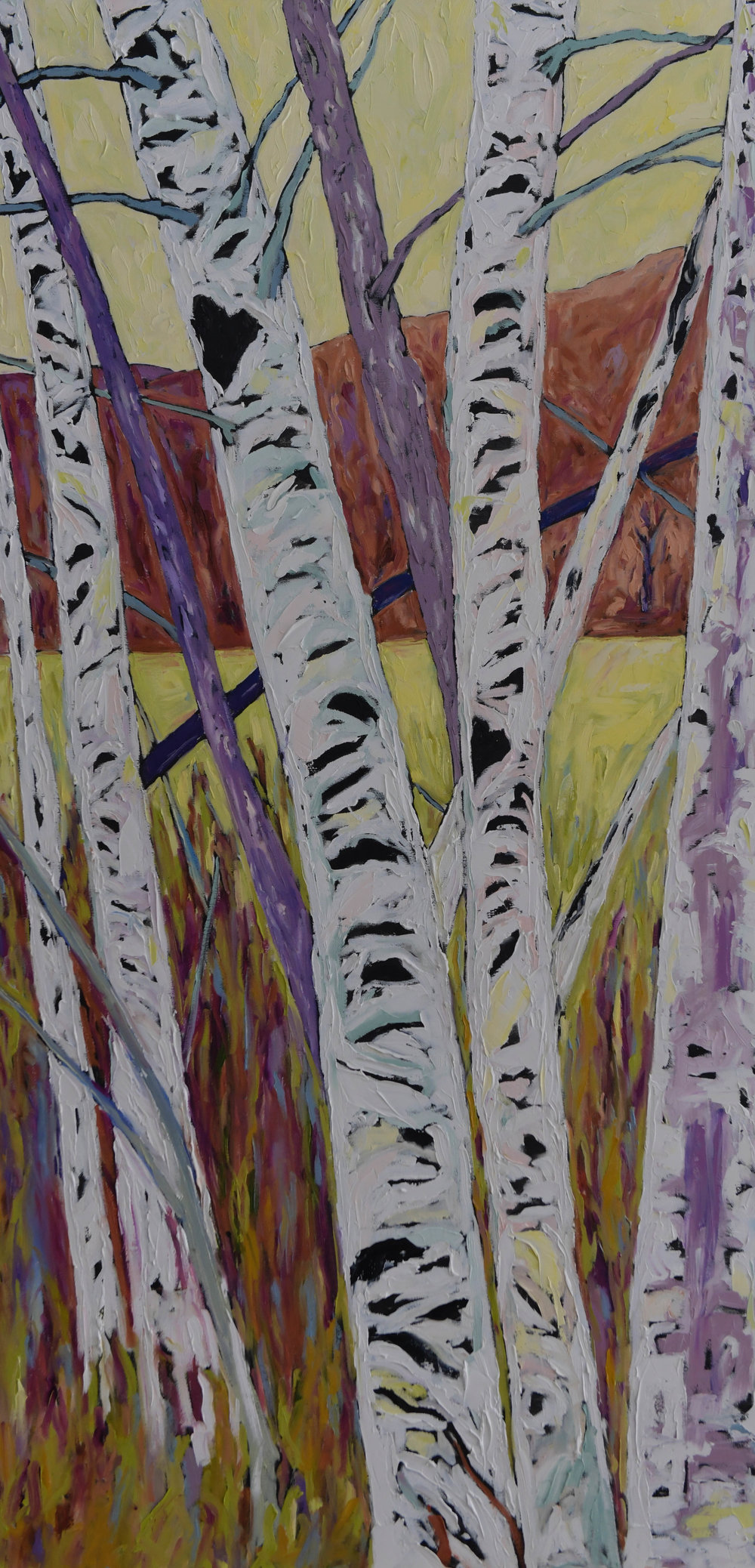 Birch Stand 48h 24w Oil on Canvas $1150 Unframed