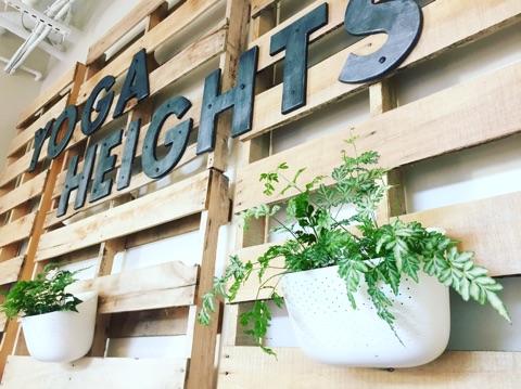 Yoga Heights design 1.jpg