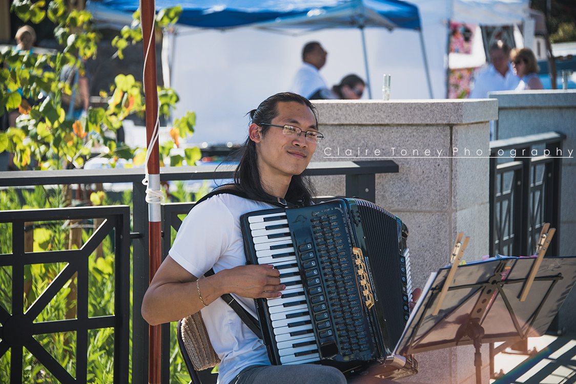 Accordion player at the Peach Festival located in Old Folsom.