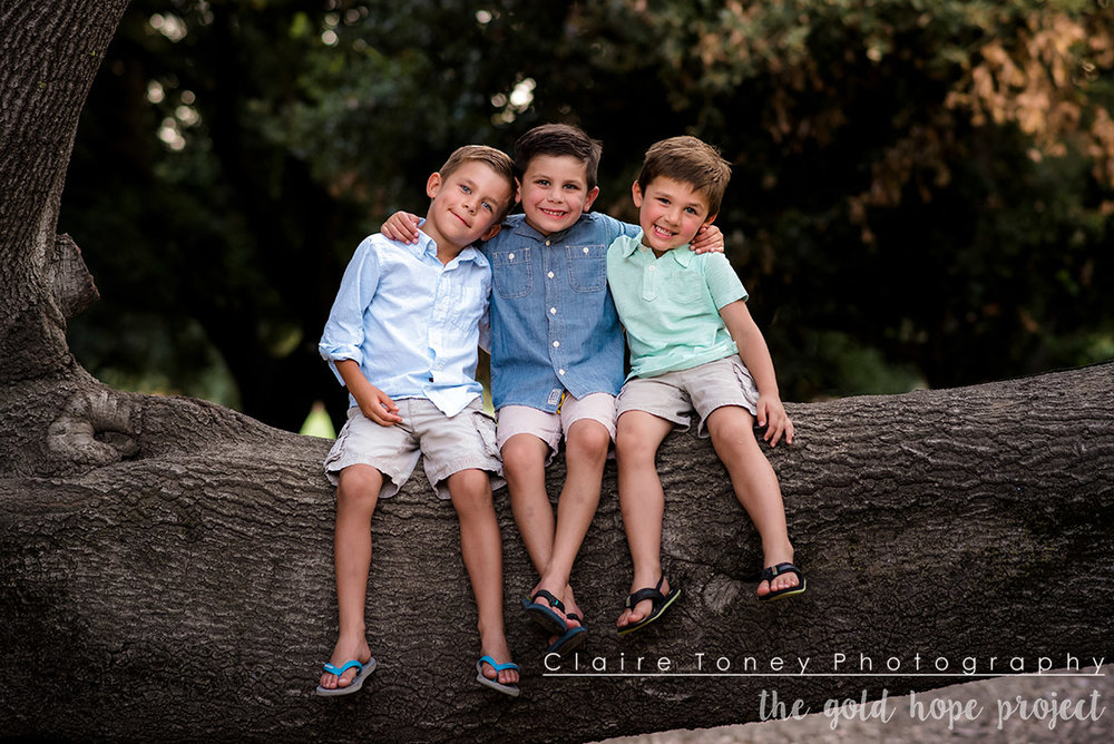 Three young boys sitting on a tree branch with their arms on each other's shoulders