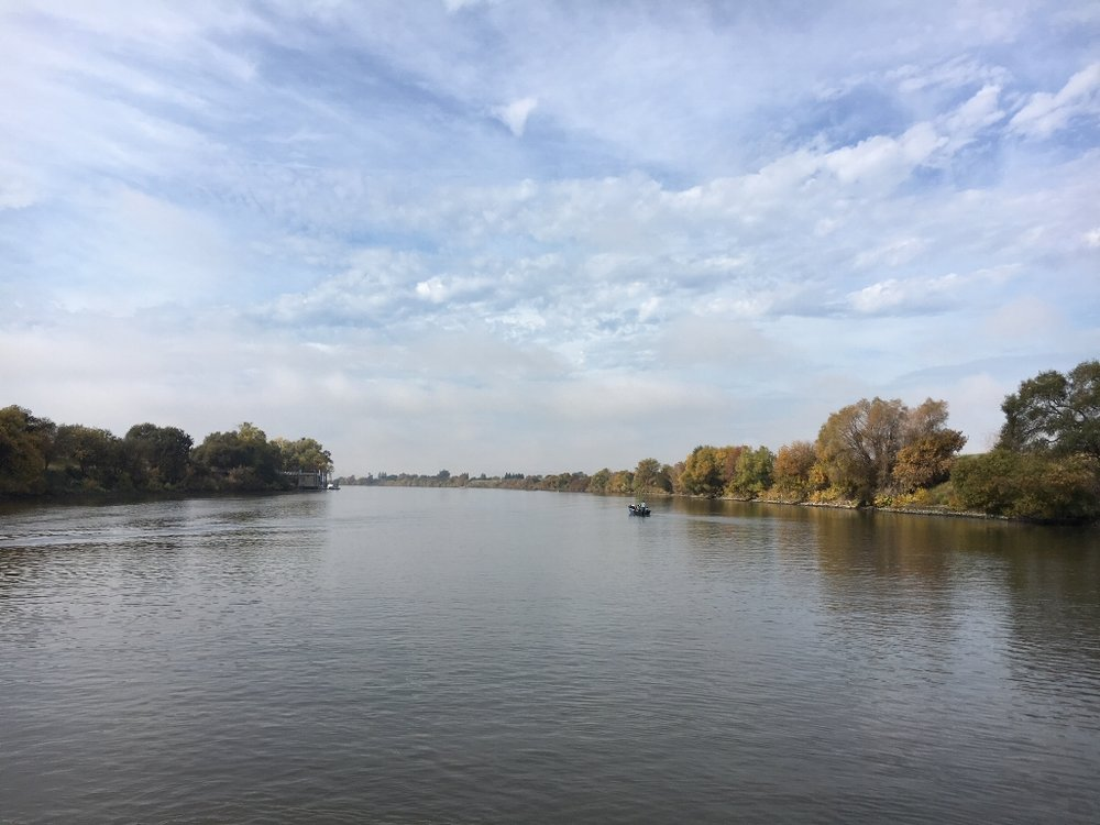View of the Sacramento River from the Hawaiian Chieftain