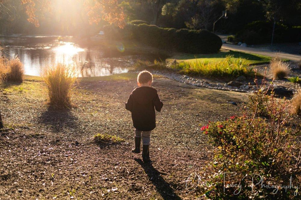 boy walking towards water at park during sunset