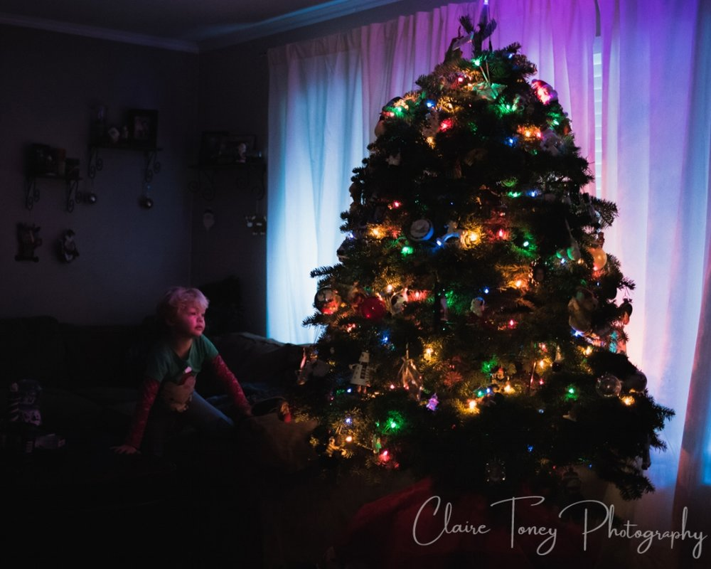 Little girl admiring a lit Christmas Tree and her face is illuminated by the colored lights
