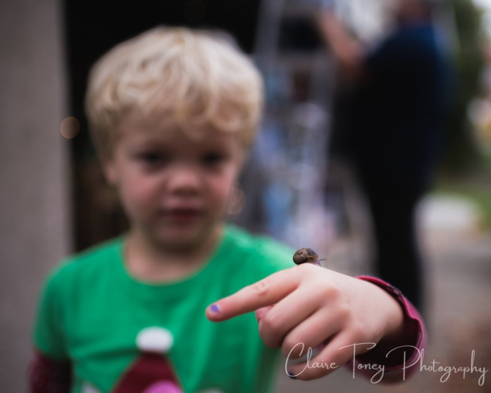 little girls holding a snail on her hand