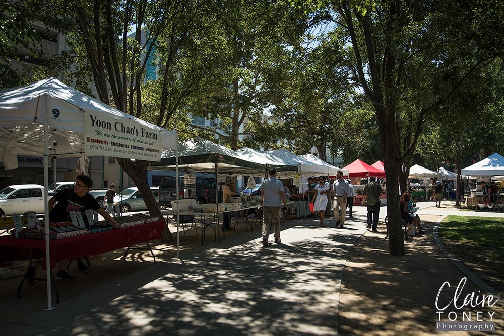 Vendors at the Midtown Farmers Market in Sac CA