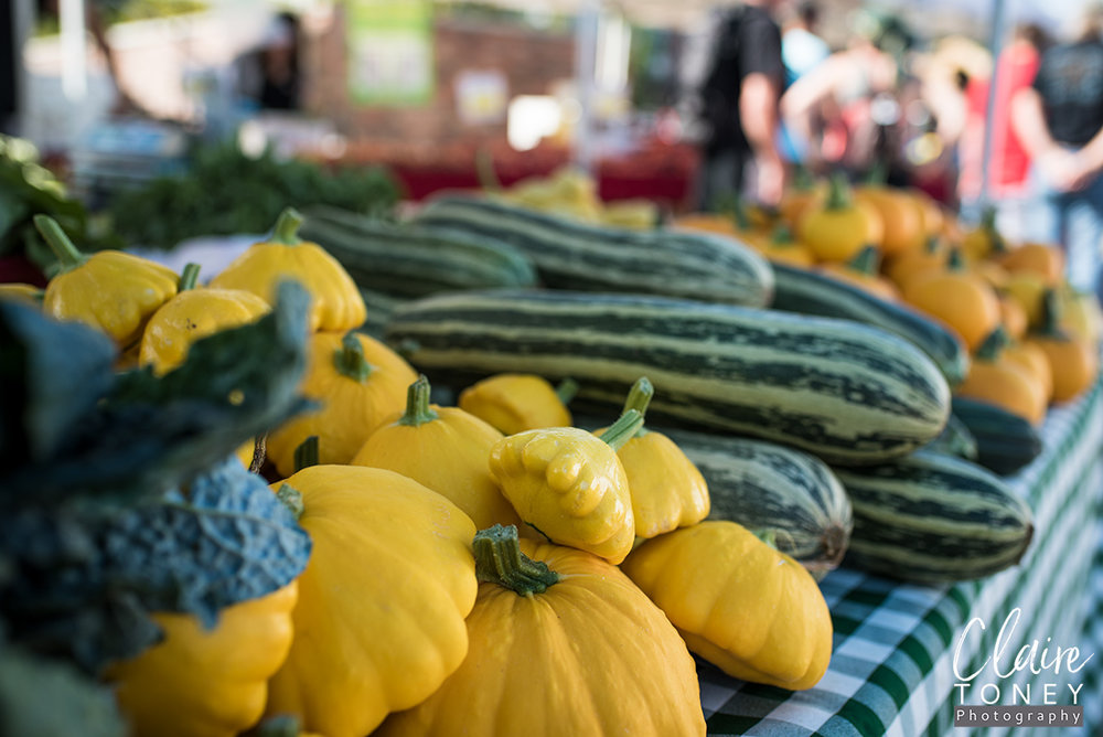 Squash at the Folsom Farmers Market
