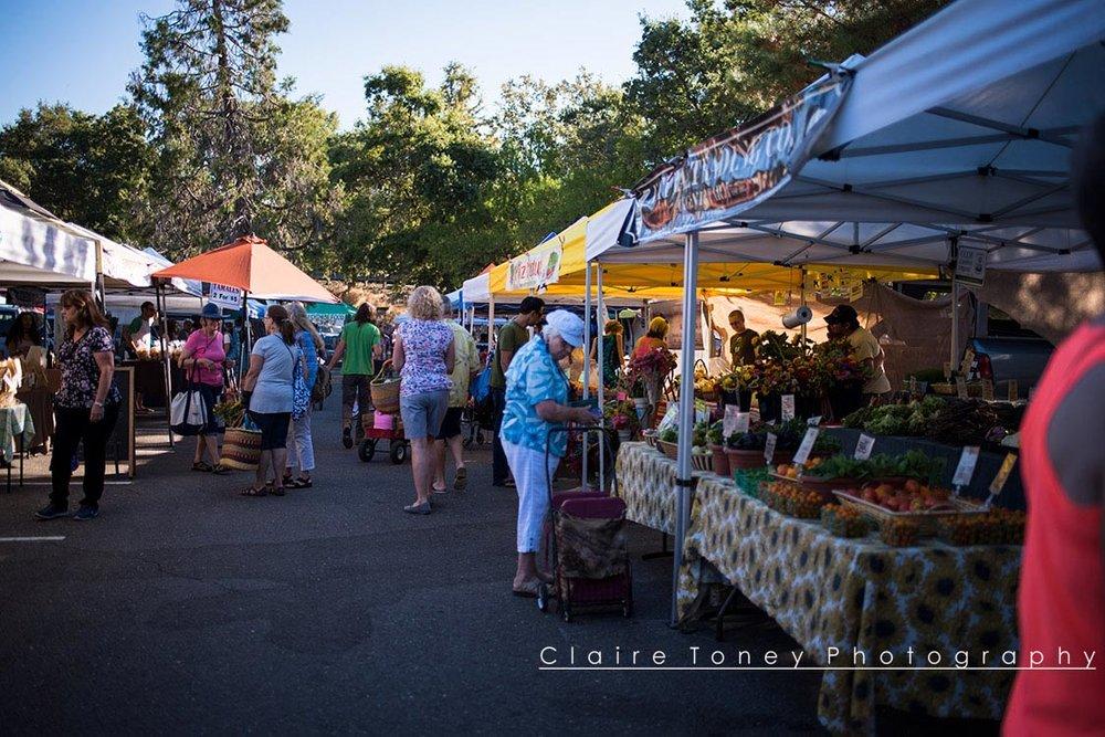 Auburn-Farmers-Market-8863.jpg