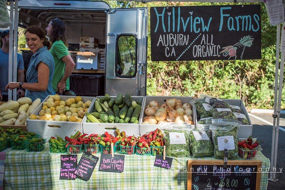 Auburn-Farmers-Market-8923.jpg