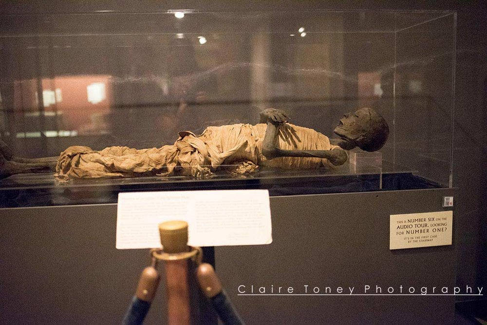 Mummy. Photo taken by Claire Toney at the Rosicrucian Museum