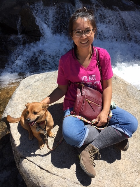 Woman in a pink shirt sitting on a rock in front of waterfalls with her little dog at the Pyramid Creek trailhead