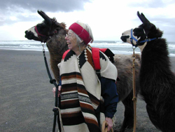 My mother with her llamas in Arcata, California in 2003