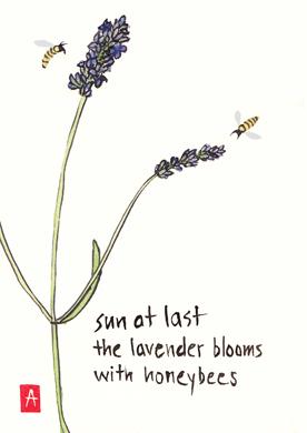 sun-at-last-for-WP-blog1.jpg