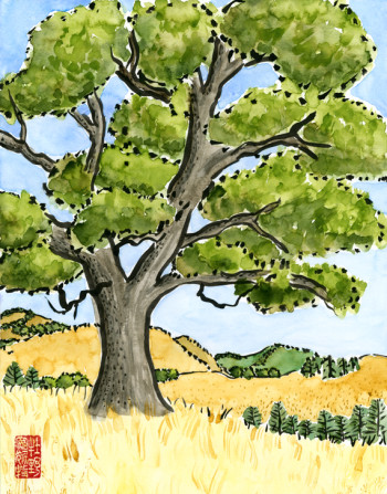 """oak tree"" is 11×14, painted with sumi ink and Japanese watercolors on paper. © 2014 Annette Makino"
