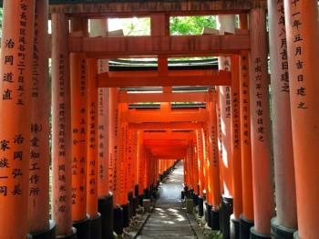 There are about ten thousand gates at the Fushimi Inari shrine in Kyoto.