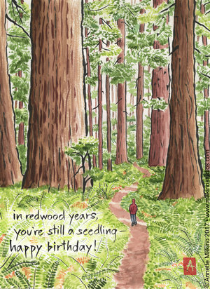 Image result for birthday in forest