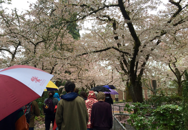 View from the trenches: a campus tour of Reed College in Portland.