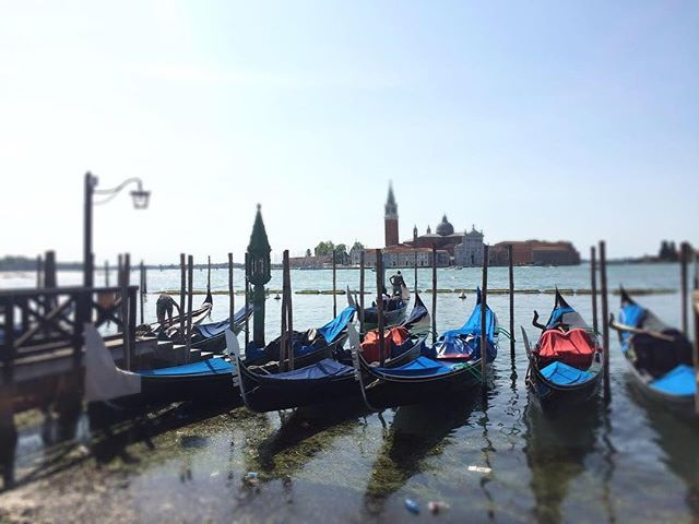 Beautiful blues in Venice 💙 . Desperately trying to remember what heat & sunshine felt like from our Italian holiday ☀️ . Meanwhile... it's snowing in London ❄️ . . . . . . #venice #veniceitaly #italy #summer #holiday #photooftheday #gondola #visititaly #travel #traveller #travelingtheworld #exploringtheglobe #wanderer #sheisnotlost #girlswhotravel #londoner #influencer #travelandlife #europeansummer #dreamingofsummer #travelawesome #instagood #seetheworld #dreamdestination #italytravel #girlaroundtheworld #travellife #globetrotter #travelgirl #thewholeview