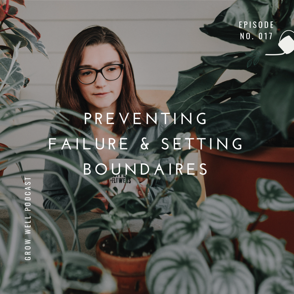 preventing failuer and setting boundaries - ep 017 Grow Well Podcast.png