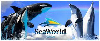 Seaworld-main-image