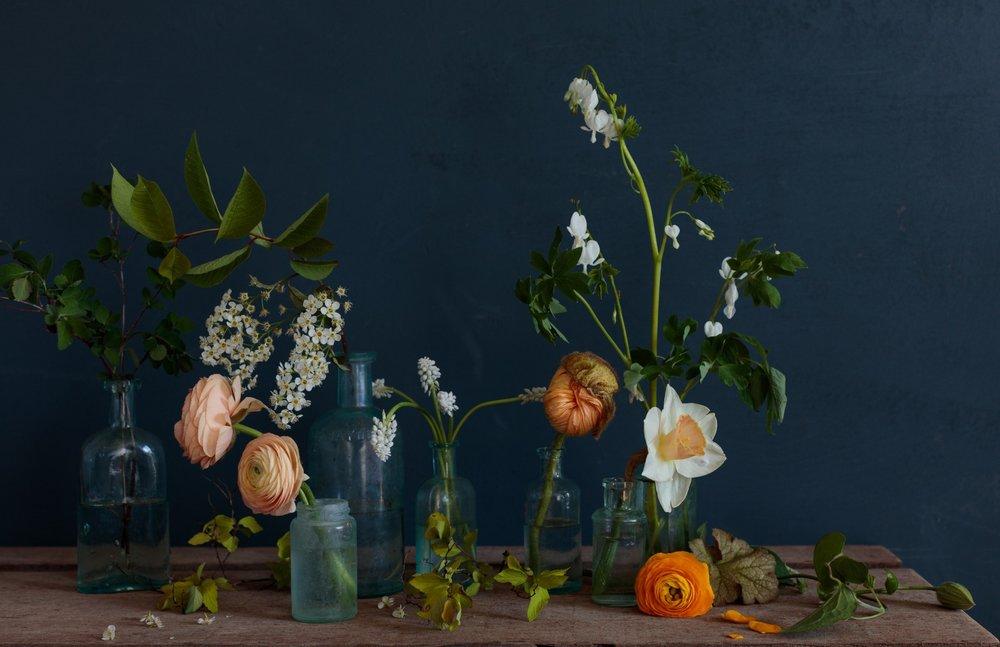 0005_Floral_160420_1620