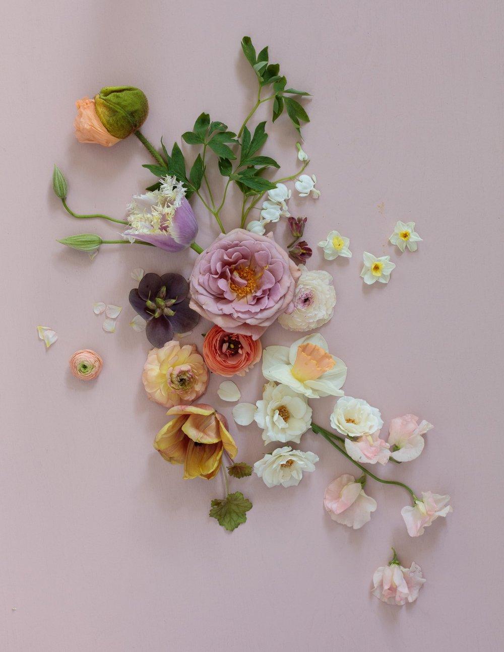0013_Floral_160420_1593