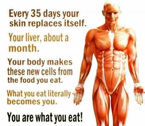 you are what you eat.JPG