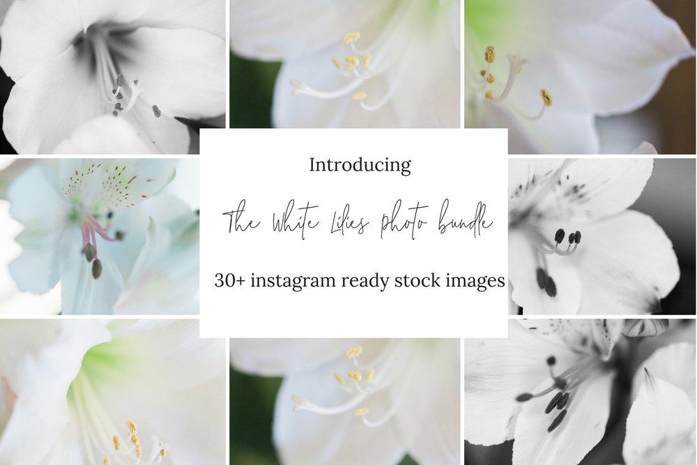 The Elegant Lily floral set.jpg