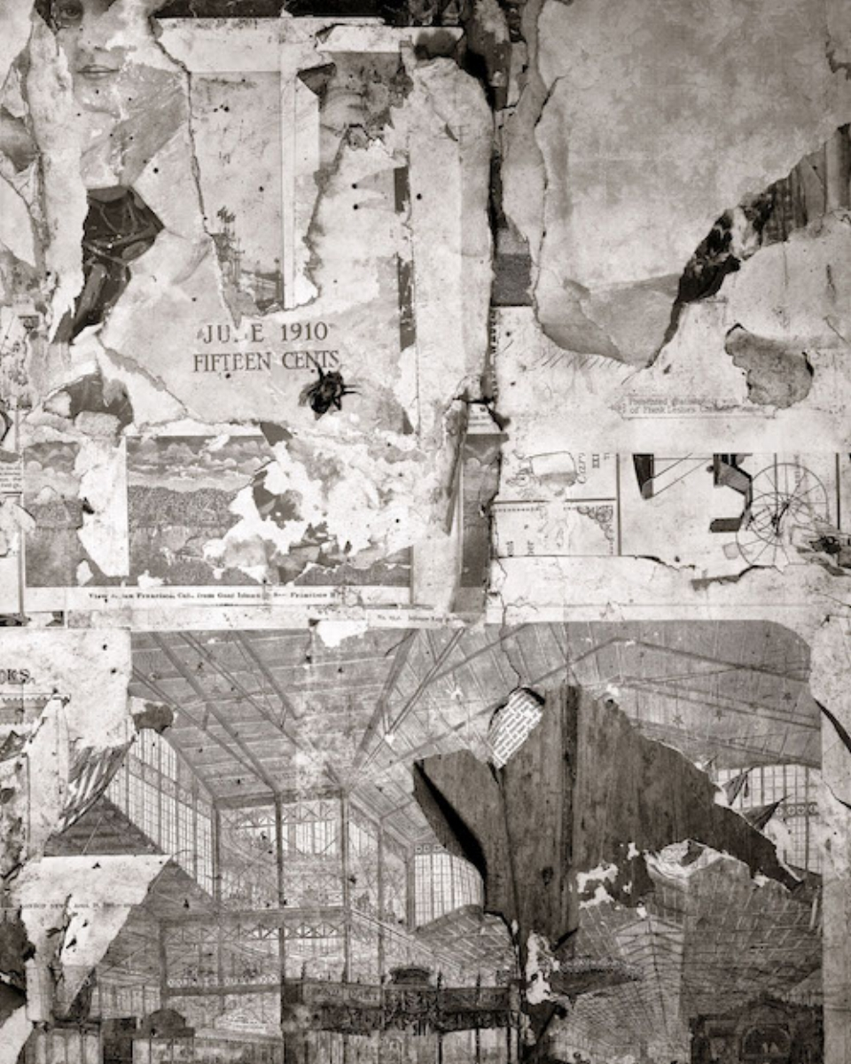 """Linda Connor, PRIVY COLLAGE...AFTER FREDERICK SOMMER, 2006, archival pigment print, 30"""" x 24"""" ed: 15"""