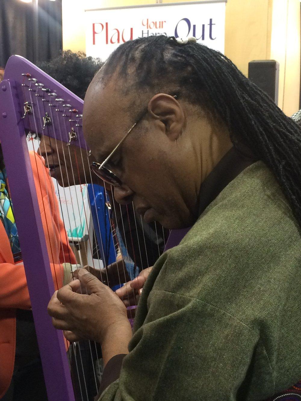 Stevie Wonder at NAMM 2016 before deciding to order harps.