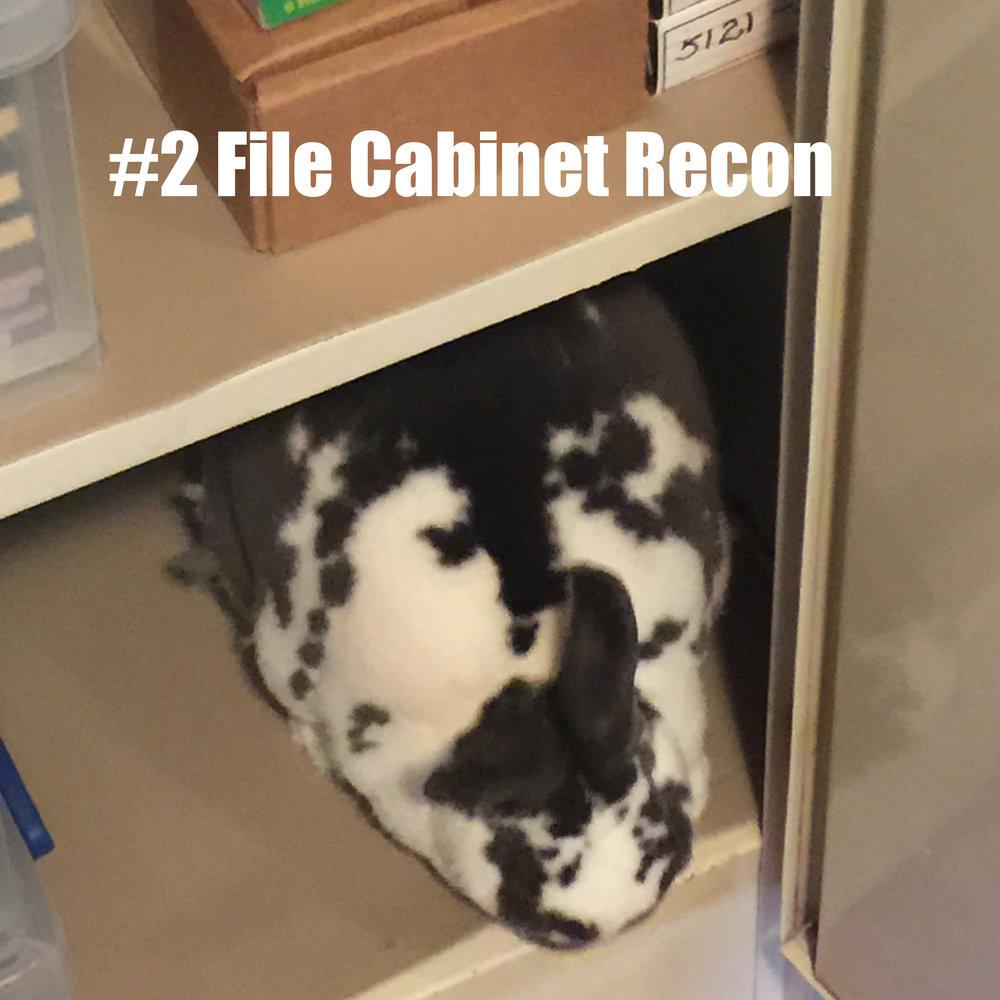 2 File Cabinet Recon.jpg
