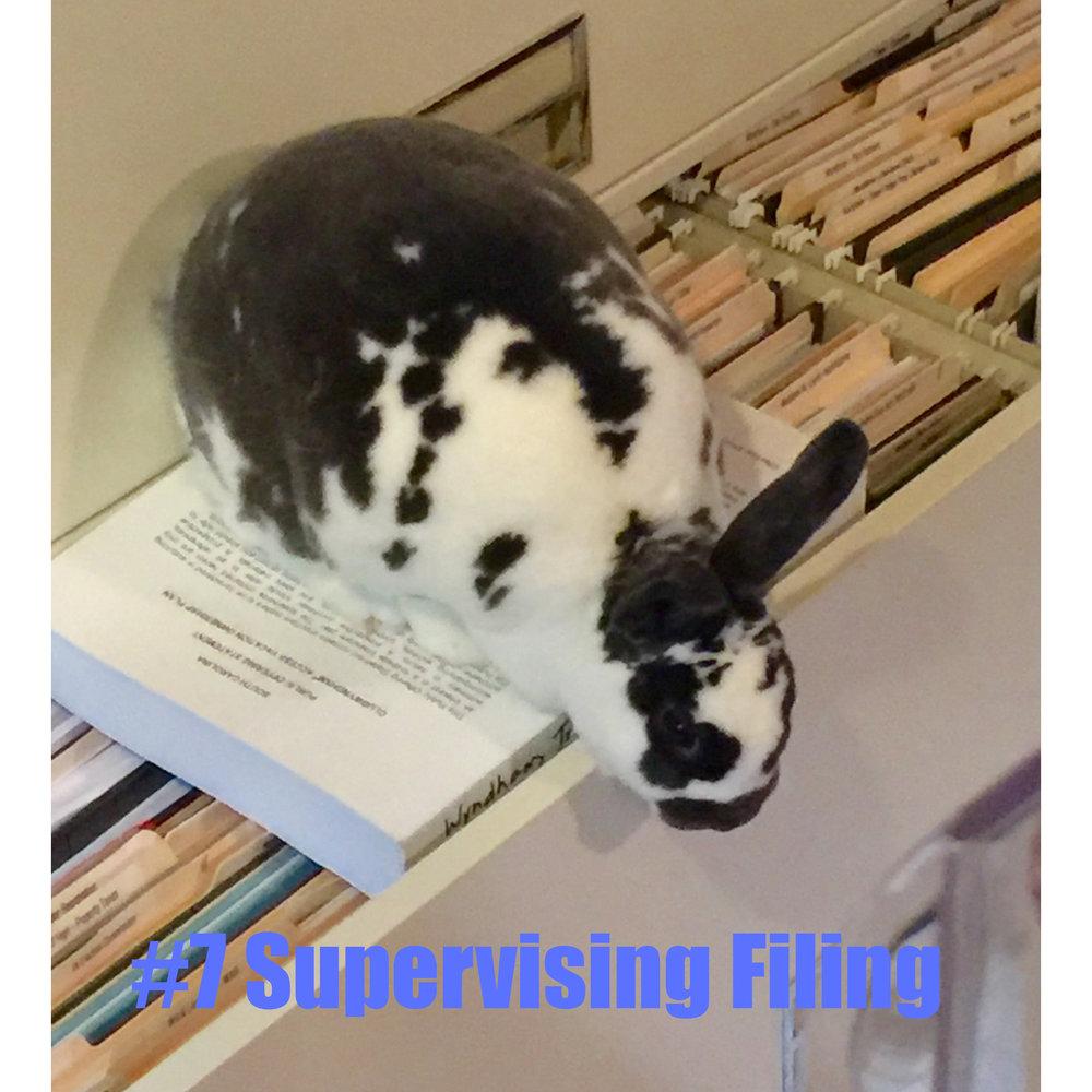 7 Supervising Filing.jpg