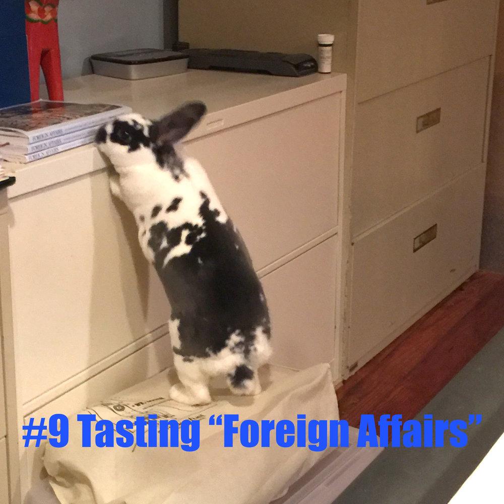 9 Tasting Foreign Affairs.jpg