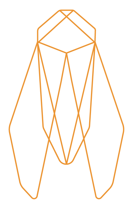 CICADA - mark - orange.png