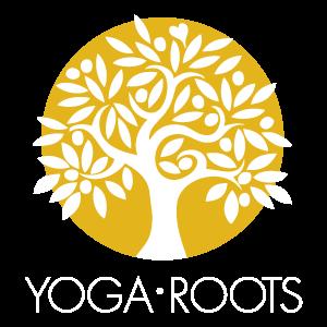 Yoga Roots Vermont Yoga Studio Shelburne Williston Online Yoga Classes Virtual Yoga Classes