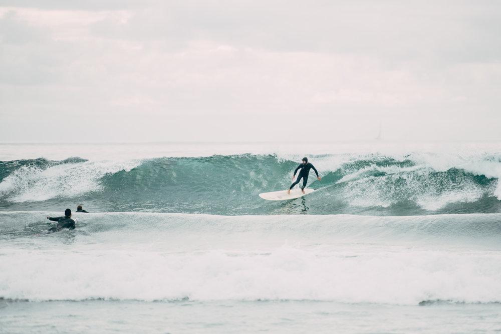 pexels-surf.jpeg