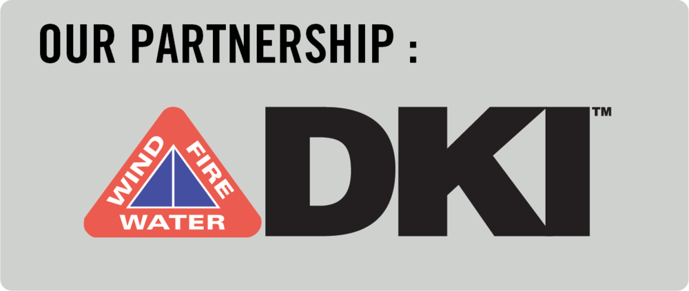 DKI Partnership.png