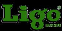 Ligo-Logo.png