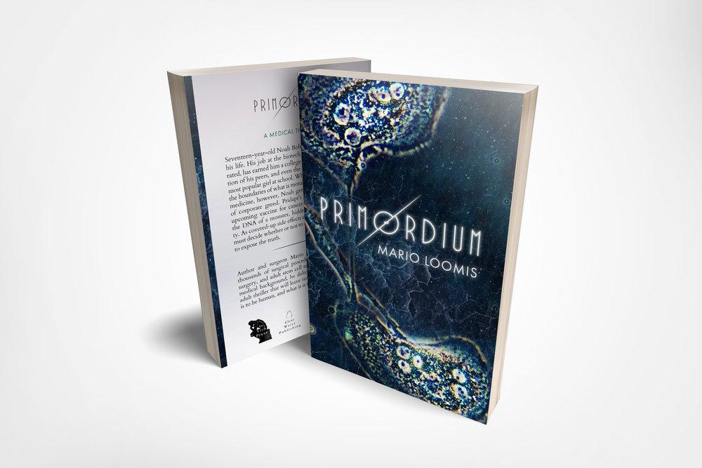 Primordium-frontback.jpg