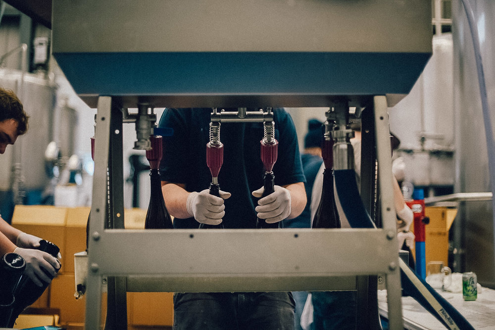 Hacienda-Beer-Co-Bottling-Le-Printemps-1.jpg