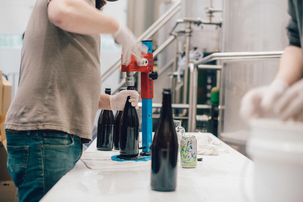 Hacienda-Beer-Co-Bottling-Le-Printemps-3.jpg
