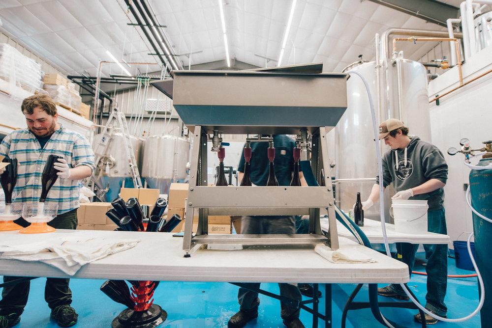 Hacienda-Beer-Co-Bottling-Le-Printemps-5.jpg