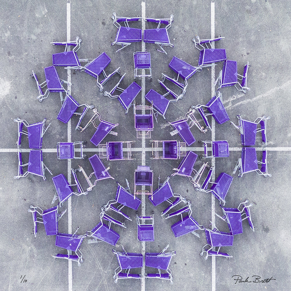 Purple Shopping Cart Mandala (Unnamed Store, 2016)