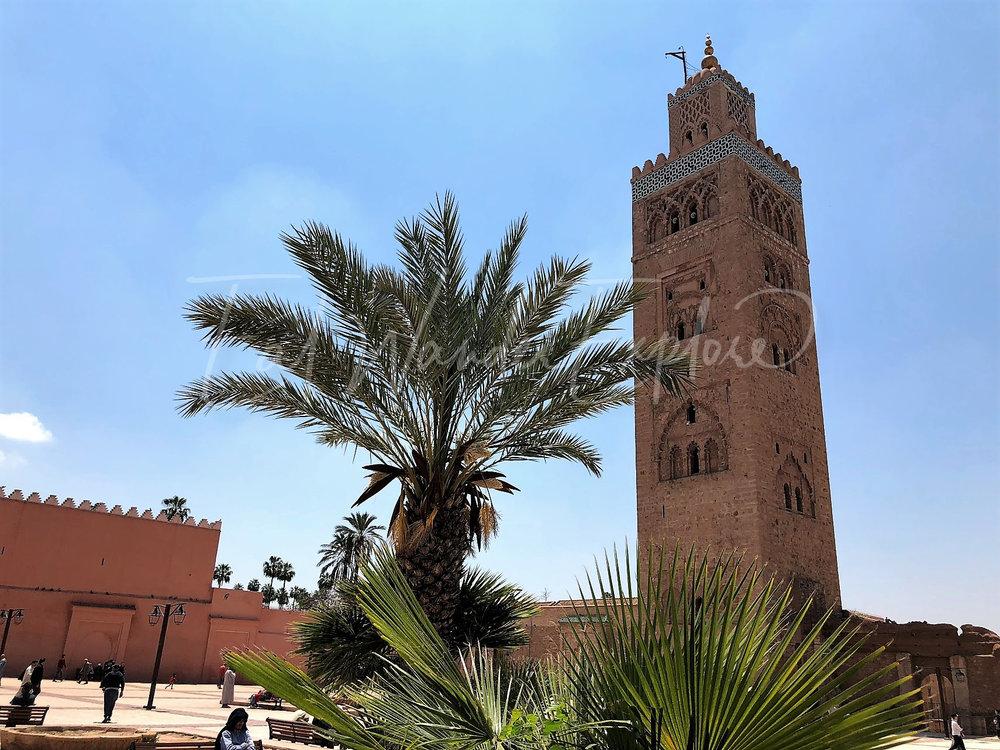 morocco1.jpg