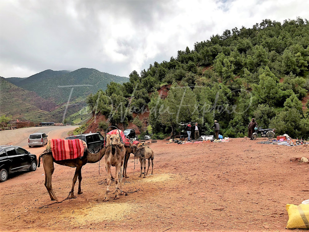 morocco33.jpg