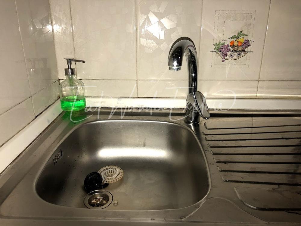 sink no garbage disposal.jpg